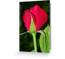 Ready To.. Greeting Card