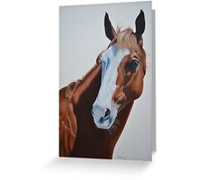 Apache Cat Greeting Card