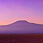 Kilimanjaro Sunrise - Panoramic - Amboseli National Park by Scott Ward