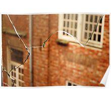 Broken View Poster