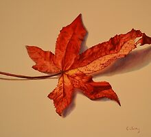 Autumn Leaf by Erin Verity