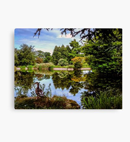 Lakeside reflections.  Canvas Print