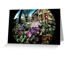 Sidewalk Flowers Greeting Card
