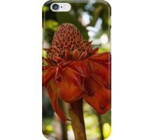 Red Torch Ginger or Ginger Lily in Hawaii iPhone Case/Skin