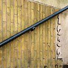 Beautiful brick - Erasmuspark entrance (1) by Marjolein Katsma