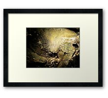 Dying Nature Framed Print