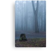 A walk in the woods Canvas Print
