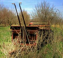 Antique farm equipment left to the elements by David Owens