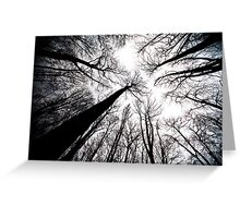 Trees (Abstract) Greeting Card