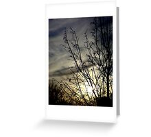 I see the sky Greeting Card