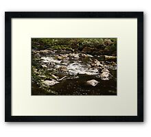 Little stream at the Hermitage Framed Print