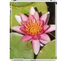 Perfection, Water Lily, Canberra, Australia. iPad Case/Skin