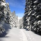 Snowshoe Heaven by Eric Glaser