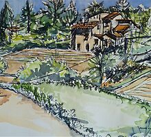La Vigna Anghiari, the neighbours Pen and wash 2010© by Elizabeth Moore Golding