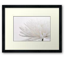 Creamy Fuji for Mums  Framed Print