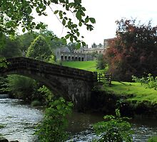 Bridge over the river Dove at Ilam, Derbyshire by Blayde666