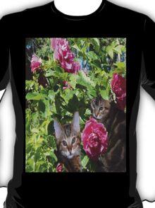 Kittens in The Roses T-Shirt