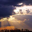 Piercing the Darkness by Terri~Lynn Bealle