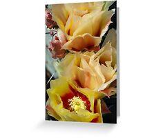 Desert Gold in Bloom Greeting Card
