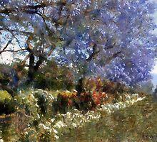 Fairytale Lane by RC deWinter