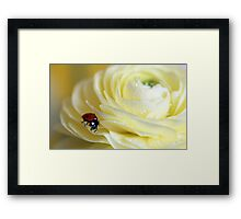 Wishing you all a Happy and Blessed Easter! Framed Print
