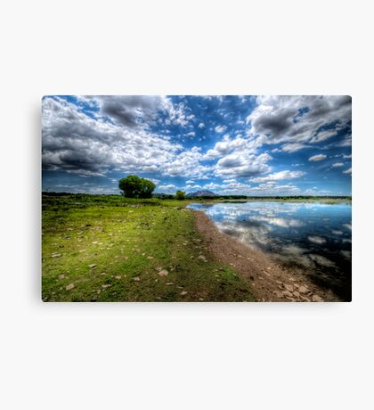 Willow Lake Blue and Green Canvas Print