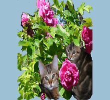 Kittens in The Roses,2 Womens Fitted T-Shirt