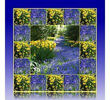 Keukenhof Gardens - Flower Lane Collage Photographic Print
