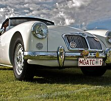MG A Twin Cam by Ferenghi