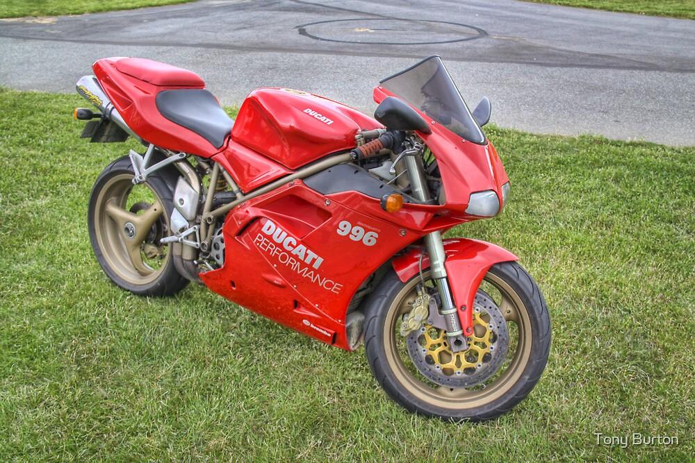 Ducati 996, Teretonga by Antony Burton
