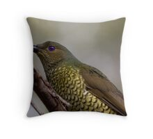 Ptilonorhynchus violaceus - Female Satin Bowerbird II Throw Pillow