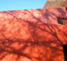 shadows on red walls by Evelyn Bach