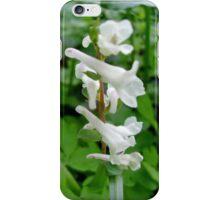 Dead nettle iPhone Case/Skin