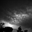Thunder And Lightning by SuddenJim