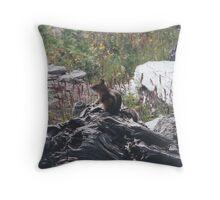 Chipmunk on Alert Throw Pillow