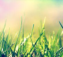 grasser by Felix Meyer