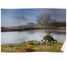 Trawsfynydd lake Poster
