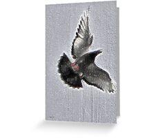 The freedom paradox Greeting Card