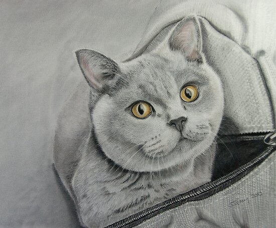Amber in a bag by Jill Tisbury
