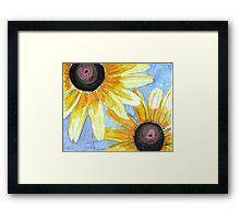 Summer Susans Framed Print