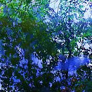 Reflections of Blue and green  by schiabor