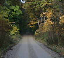 fall color down country road by drgadget