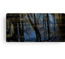 mirror reflections & Shadow Canvas Print