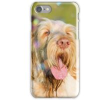 Orange & White Italian Spinone Dog Head Shot with Bubbles iPhone Case/Skin