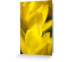 Yellow Flower Abstract Greeting Card