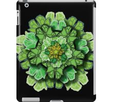 Butterfly Effect • Green iPad Case/Skin