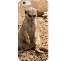 Sad Meerkat iPhone Case/Skin