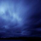 Night's Sky by Trenton Purdy