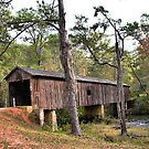 Covered Bridge by WTBird