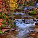 Little falls..... by DaveHrusecky
